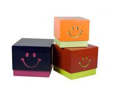 Set 3 cutii de depozitare