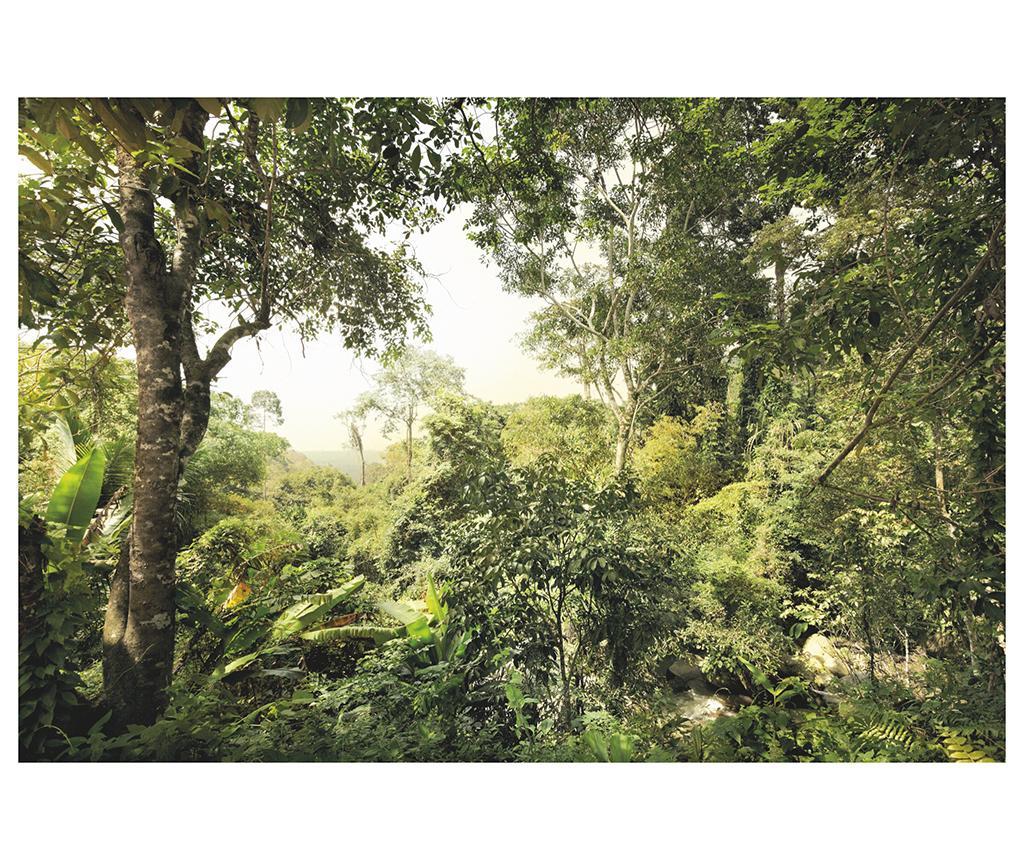 Tapet Jungle 248x368 Cm