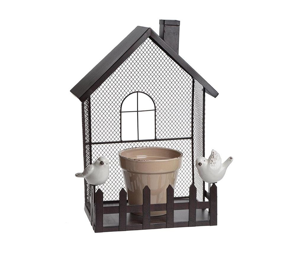 Set raft de perete si ghiveci House & Birds M