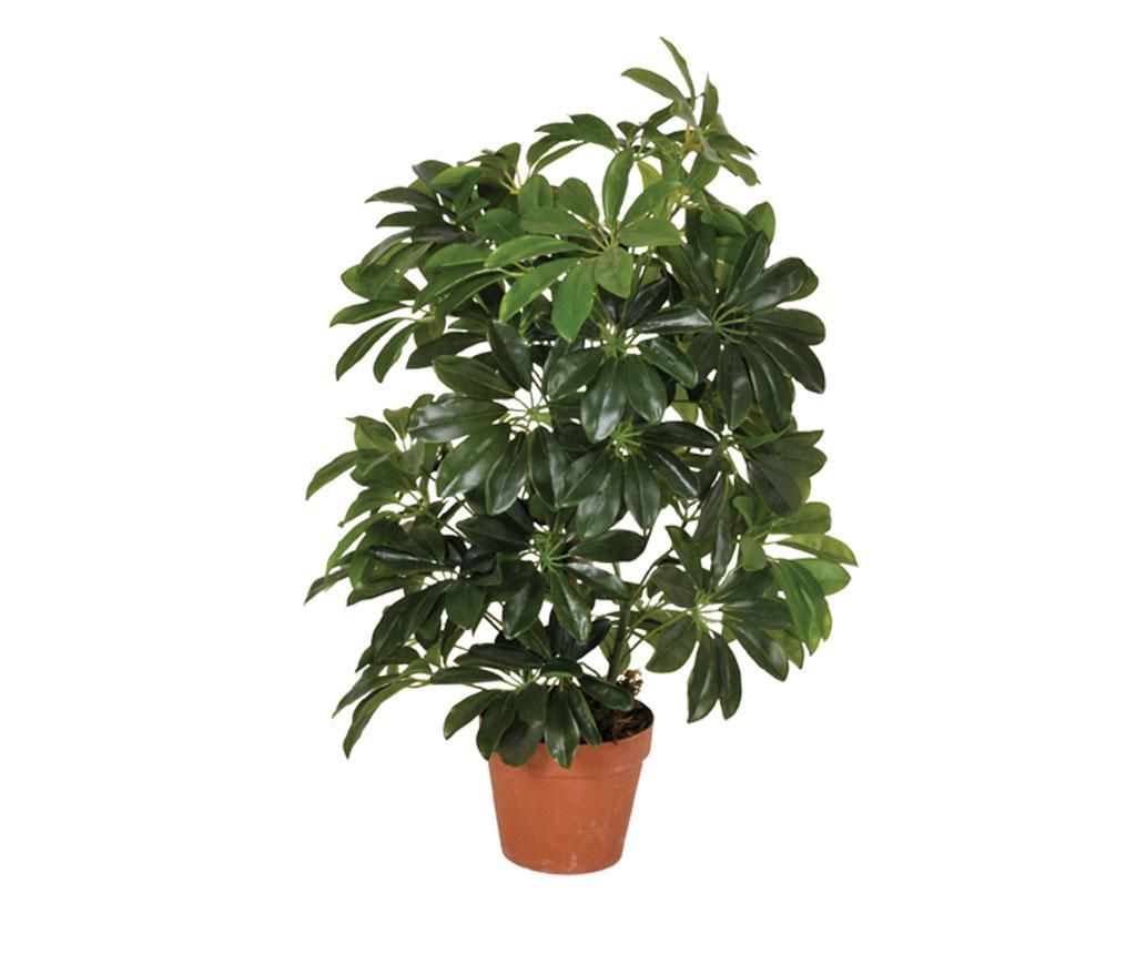 Planta artificiala Cheflera More