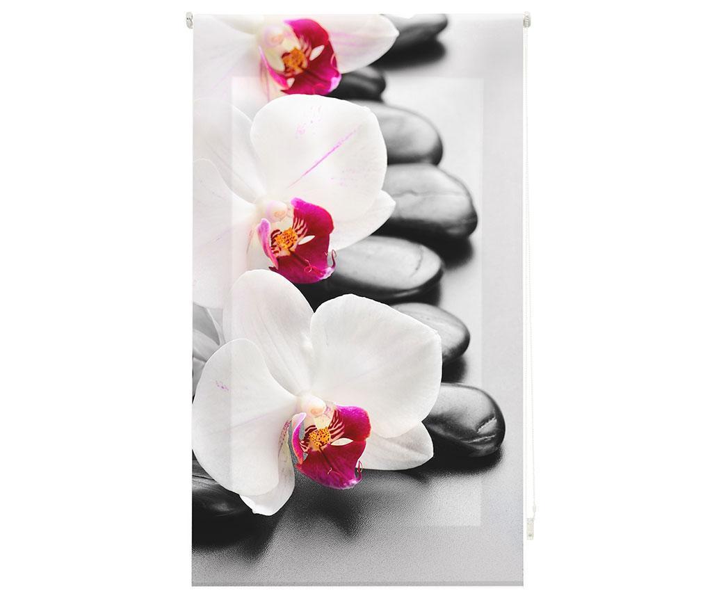 Jaluzea tip rulou Orchid 100x180 cm imagine