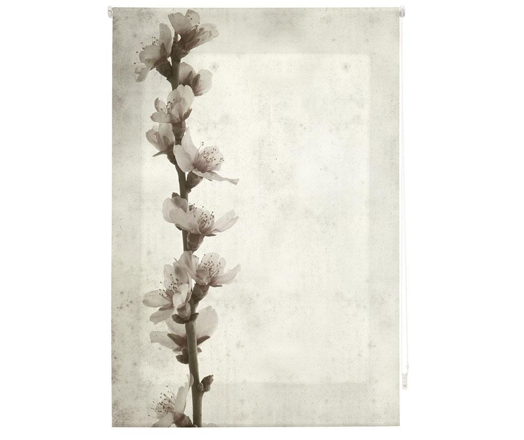 Jaluzea tip rulou Growth 140x180 cm imagine