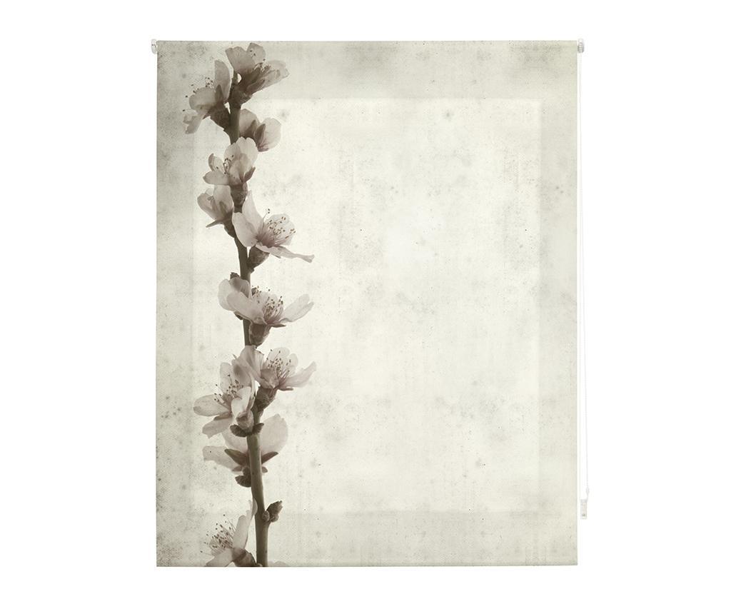 Jaluzea tip rulou Growth 80x180 cm - Blindecor, Crem,Gri & Argintiu imagine