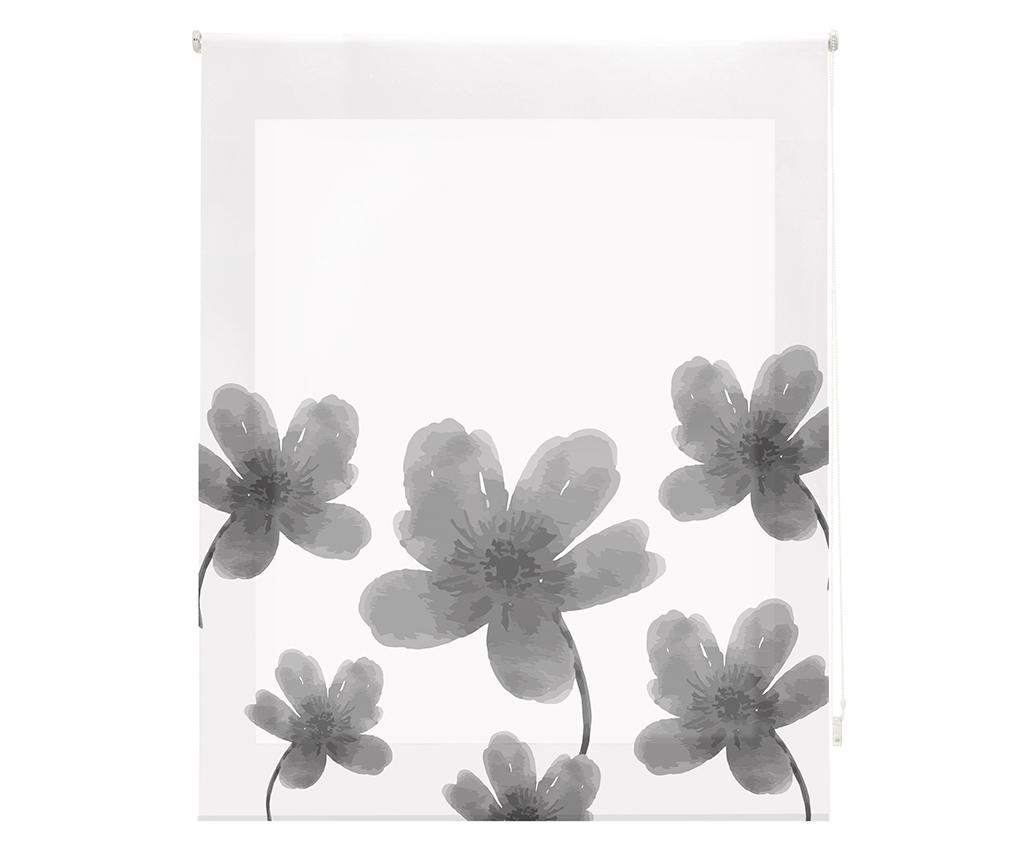Jaluzea tip rulou Pansies Grey 160x180 cm - Blindecor, Gri & Argintiu