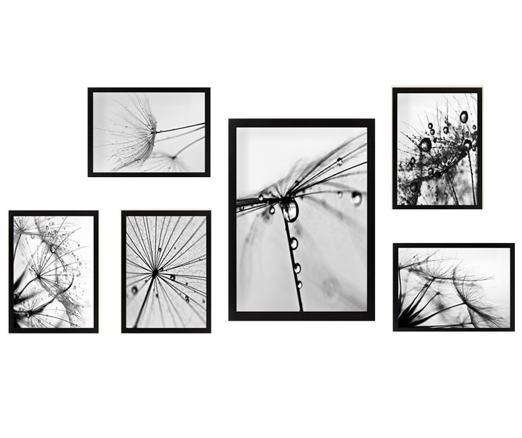 Set 6 tablouri Dandelion imagine