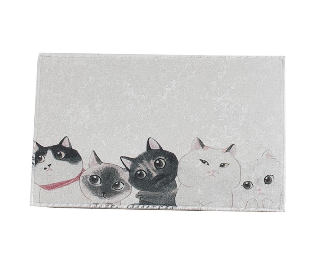 Covoras de baie Curious Cats 40x60 cm