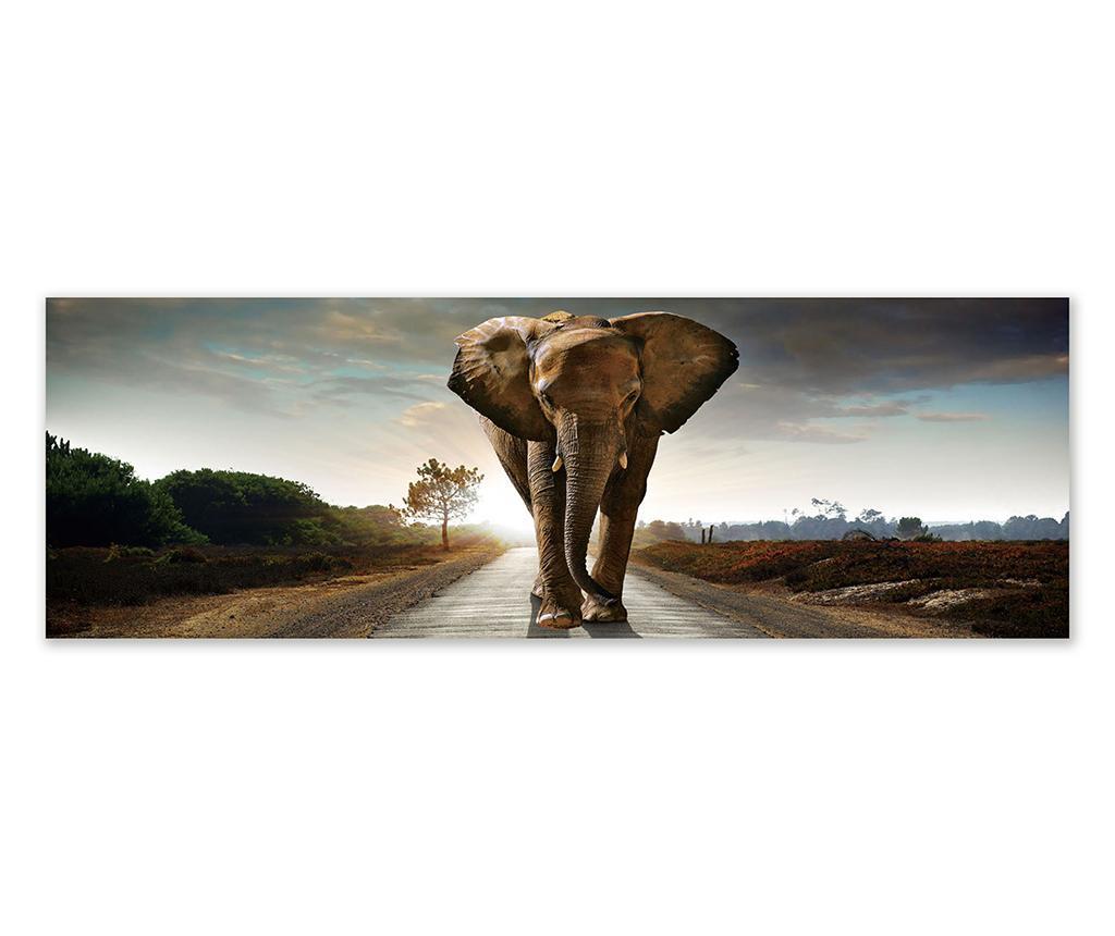 Tablou Savana Guardian 50x150 cm - Casa Selección, Multicolor imagine