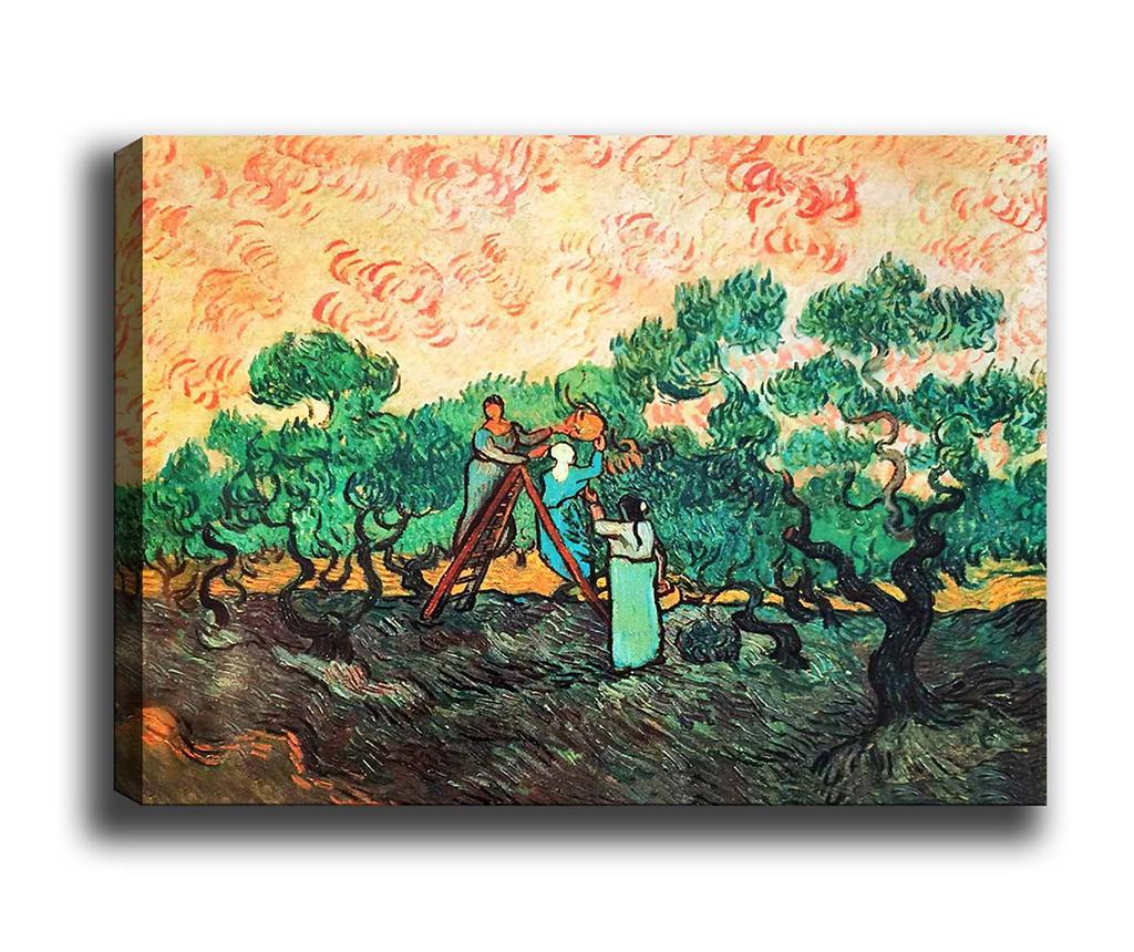 Tablou Olive Picking 50x70 cm - Tablo Center, Multicolor imagine
