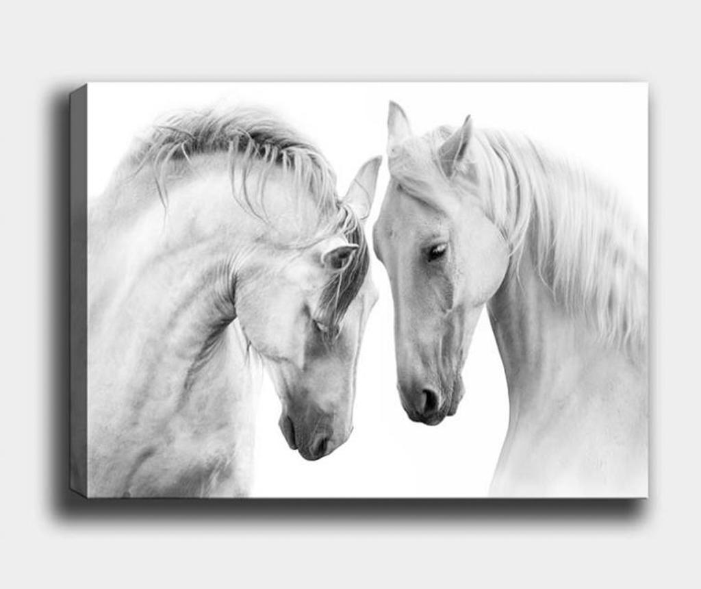 Tablou Horse 70x100 cm - Tablo Center, Multicolor de la Tablo Center