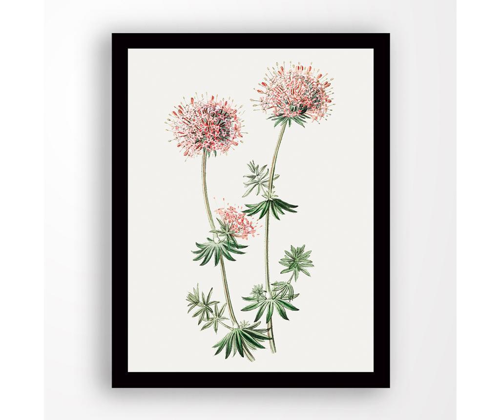 Tablou Pink Flower 24x29 cm - Tablo Center, Multicolor imagine