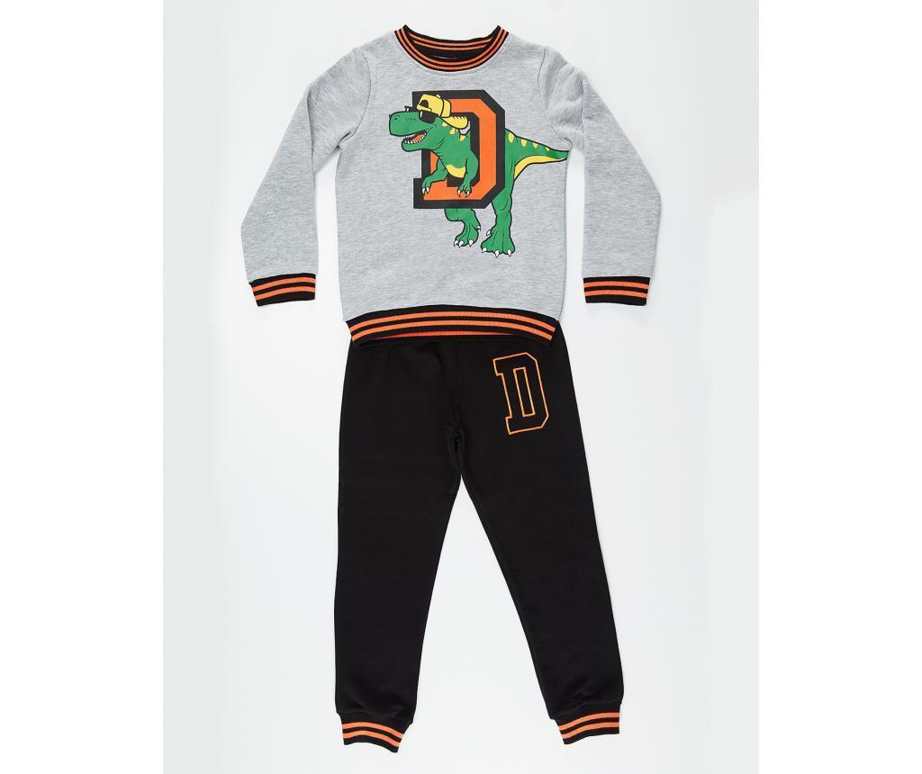 Set bluza si pantaloni Dino D 3 ani
