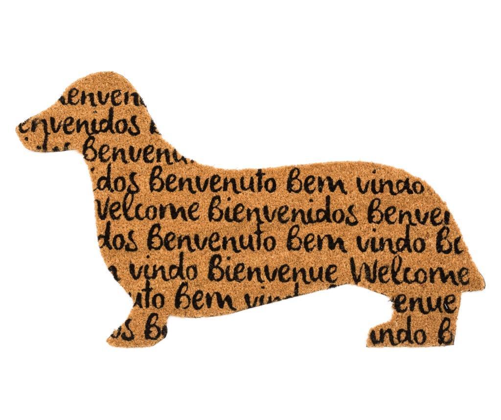 Covoras de intrare Tongues Dog 50x80 cm - Casa Selección, Maro vivre.ro