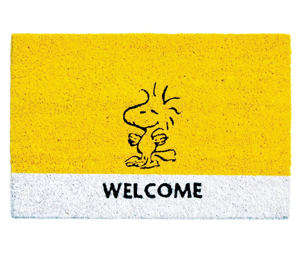Covoras de intrare Peanuts 40x60 cm imagine
