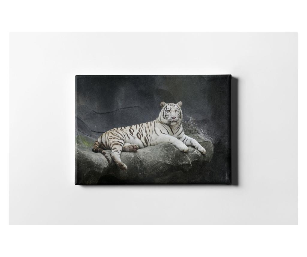 Tablou The White Tiger 50x70 cm - CASBERG, Multicolor imagine