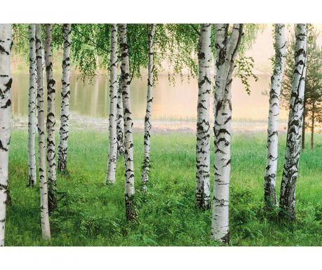 Тапет Nordic Forest 254x366 см