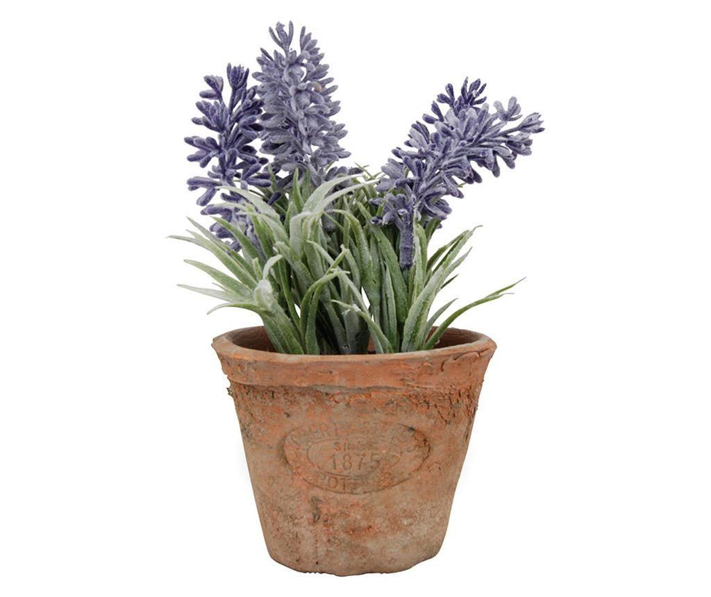 Umetna lončnica - rastlina Lavander