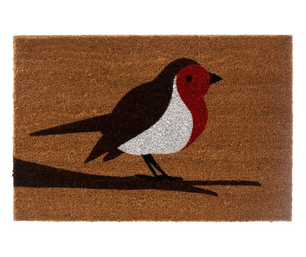 Wycieraczka Robin 40x60 cm