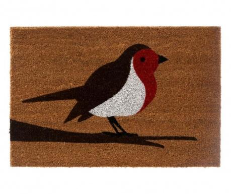 Covoras de intrare Robin 40x60 cm