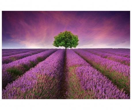 Koberec Violet Sunset 52x75 cm