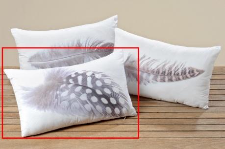Poduszka dekoracyjna Feather Three 30x50 cm