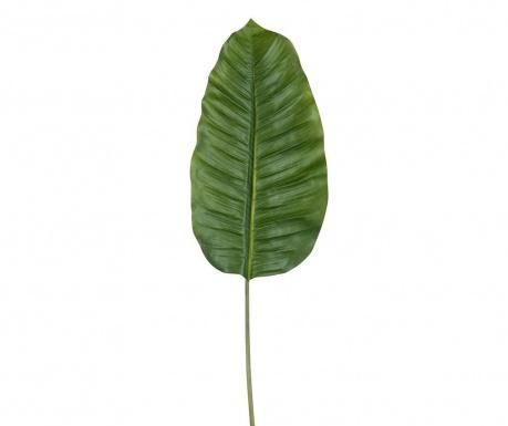 Groen Műnövény