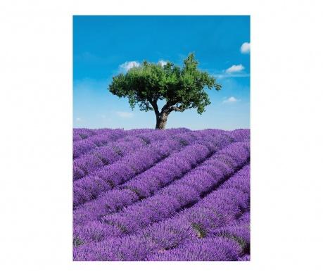 Тапет Provence 183x254 см