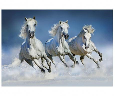 Tapet Arabian Horses 254x366 cm