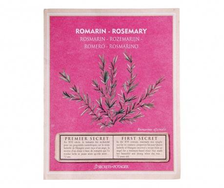 Paket sjemenki ružmarina Growing Healty Rosemary