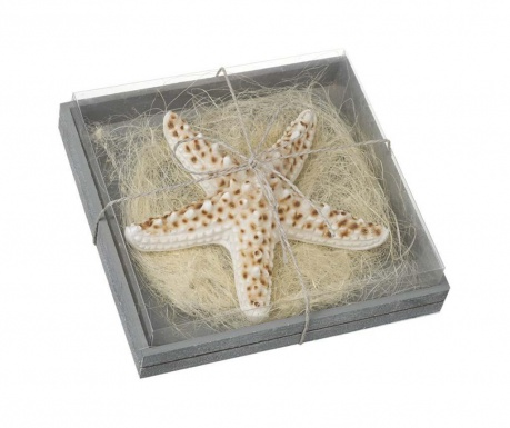 Sviečka Starfish