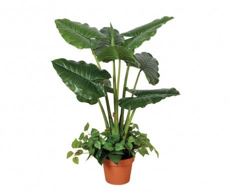 Umjetna biljka u posudi za cvijeće Taro