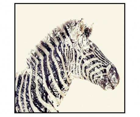 Safari Zebra Kép 80x80 cm