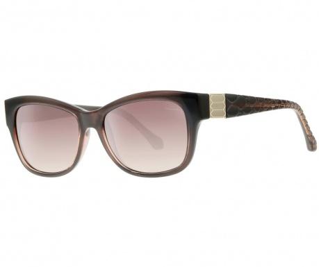 Roberto Cavalli Gradient Wayfarer Brown Női napszemüveg