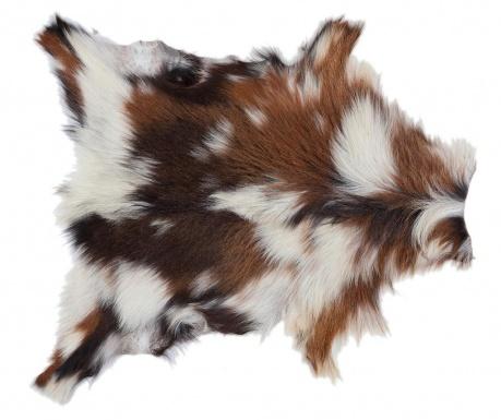 Lark Szőnyeg 80x90 cm