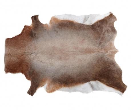 Covor Blesbok 75x100 cm