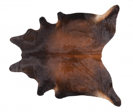 Sollin Szőnyeg 215x224 cm