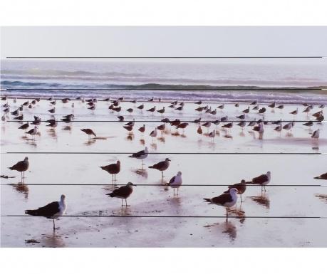 Playa Kép 75x110 cm