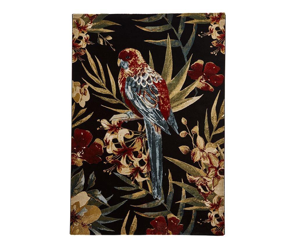 Koberec Tropics Black 120x170 cm