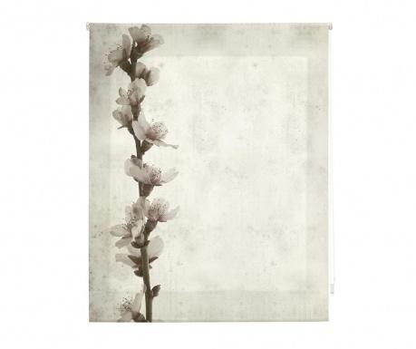 Rolo zavesa Growth 80x180 cm