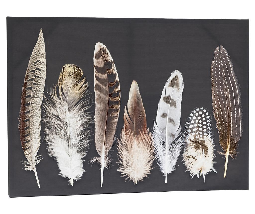 Feather Kép 65x92 cm