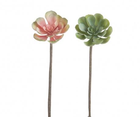 Set 2 umjetna cvijeta Succulent Rise