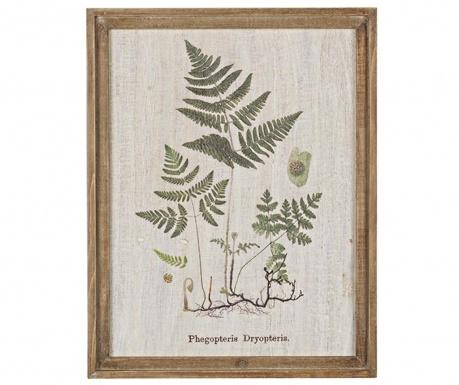 Greenery Dryopteris Kép 35x45 cm