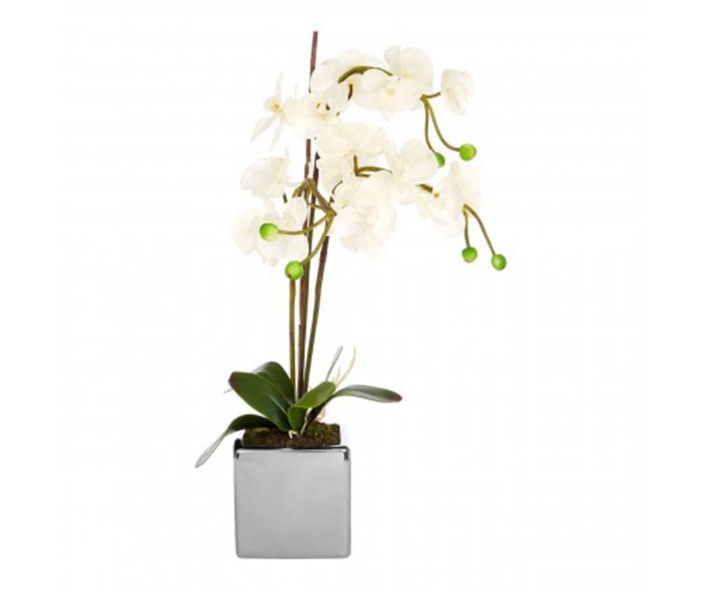 Fiori Orchid Művirág virágcserépben
