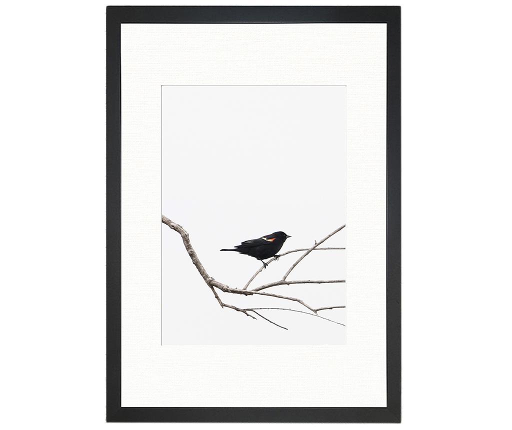 Obraz Bird on the Branch 24x29 cm