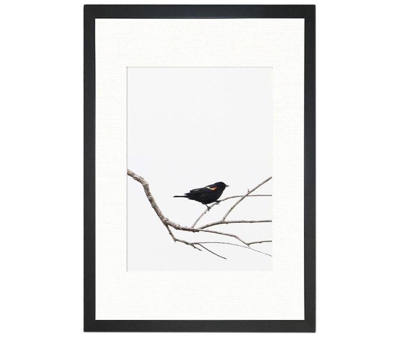 Slika Bird on the Branch 24x29 cm