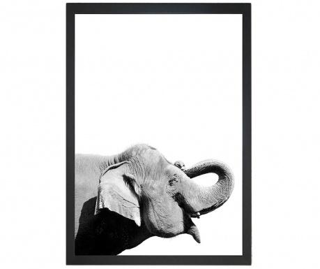 Obraz Damarion Elephant 24x29 cm