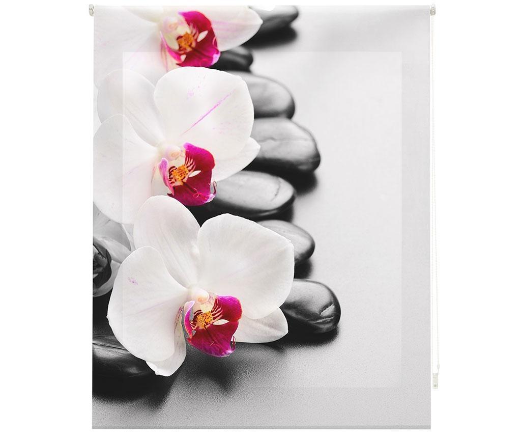 Jaluzea tip rulou Orchid 120x180 cm - Blindecor, Gri & Argintiu