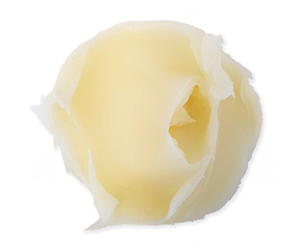 Maslo za tuširanje Colada 320 g