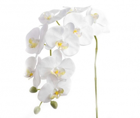 Umelá kvetina Orchid Eden