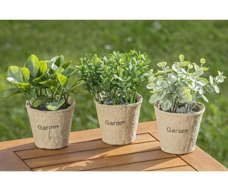 Zestaw 3 sztucznych roślin w doniczce Eucalytus