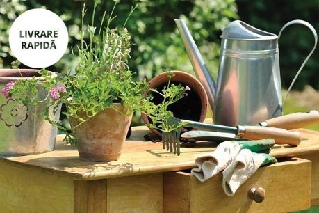 Grădină Esschert Design
